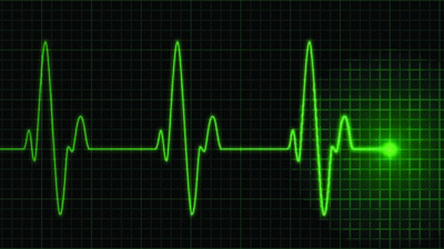 When listeners pay close attention to stories, their heart rates synchronize